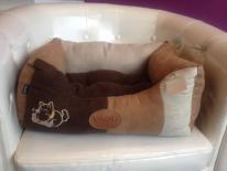 Sofa nougat douillet pour chien Vivog (AU PALACE DU CHIEN)